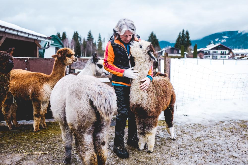 Alpaka-Inzell-Wandern-Alpakawanderung-Tipps-44