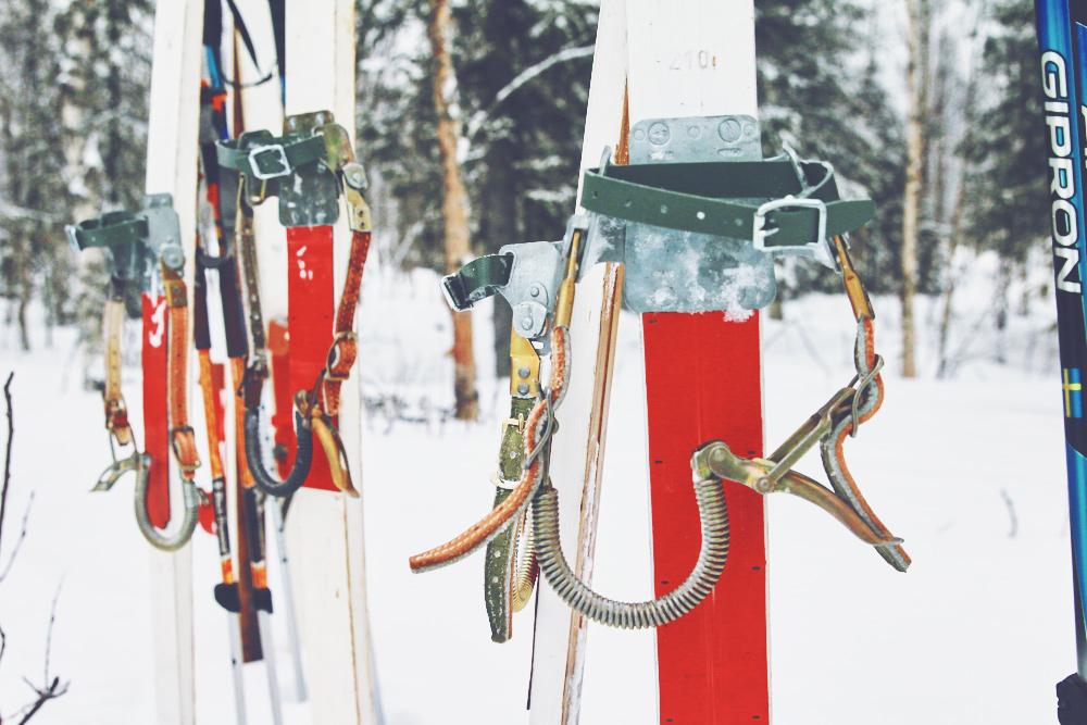Lappland-Freiseindesign-Wildcat-Adventure-593