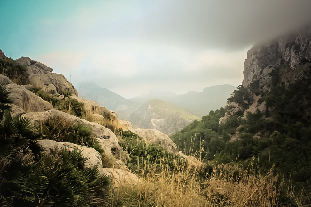Ferien auf Mallorca