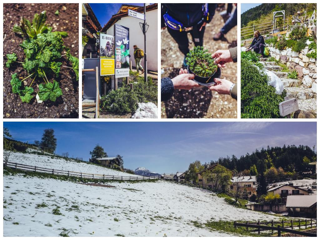 Südtirol Balance Erlebnis: Mit Ruhe zurück zum Ursprung – Altes Wissen neu entdecken in Truden im Naturpark
