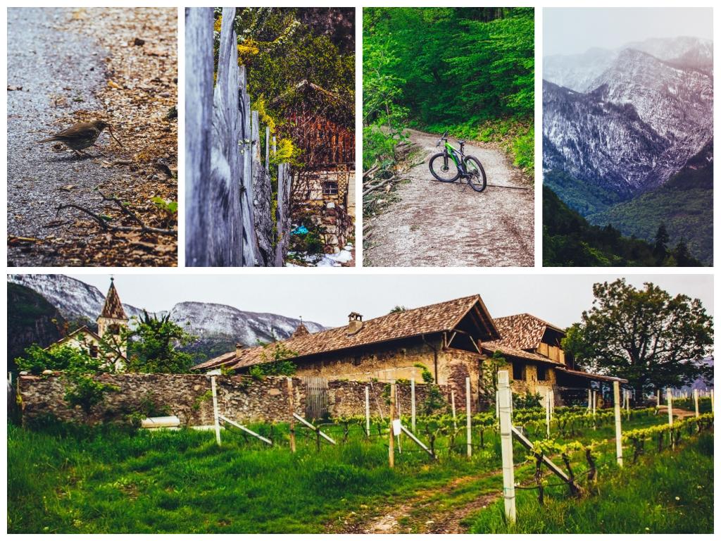 Südtirol Balance Erlebnis Urlaub Kaltern Reiseblog Freiseindesign-2-20