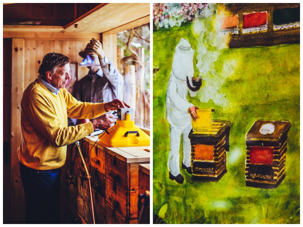 Südtirol Balance Erlebnis: Die Heilkraft von Honig und Bienenluft