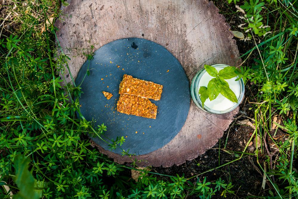 Tipps Picknick Garten