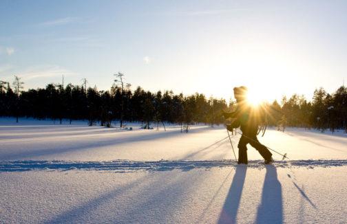 Bear Ski Finnland
