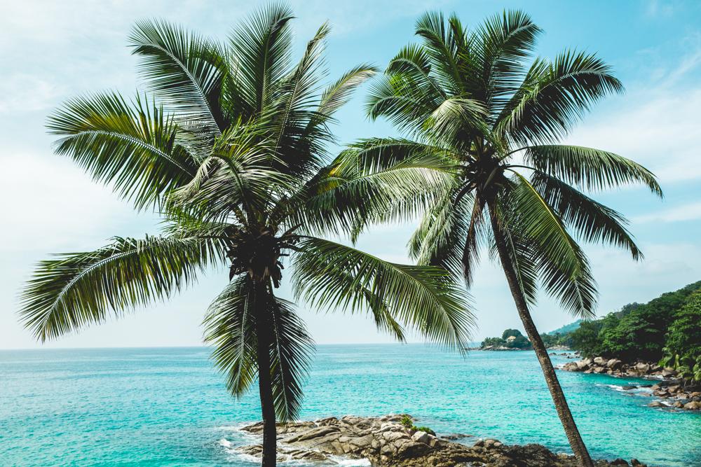 freiseindesign-outdoorblog-seychellen-direktflug-tipps-flug