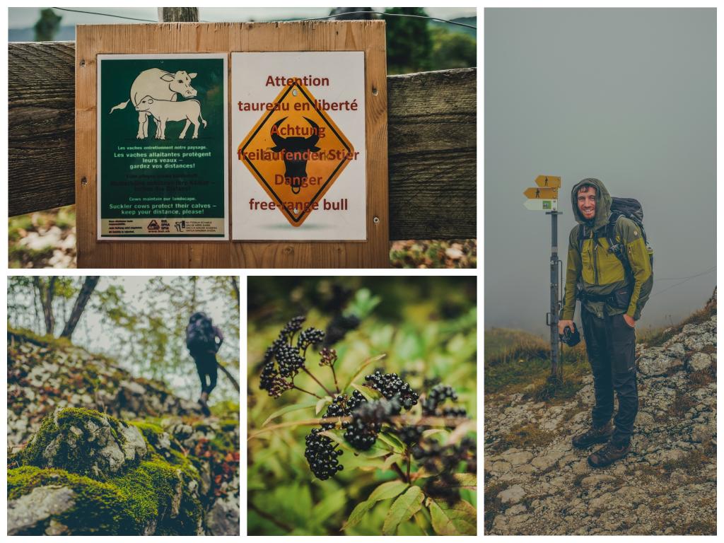 Jurahöhenweg Schweiz Wandern Tipps