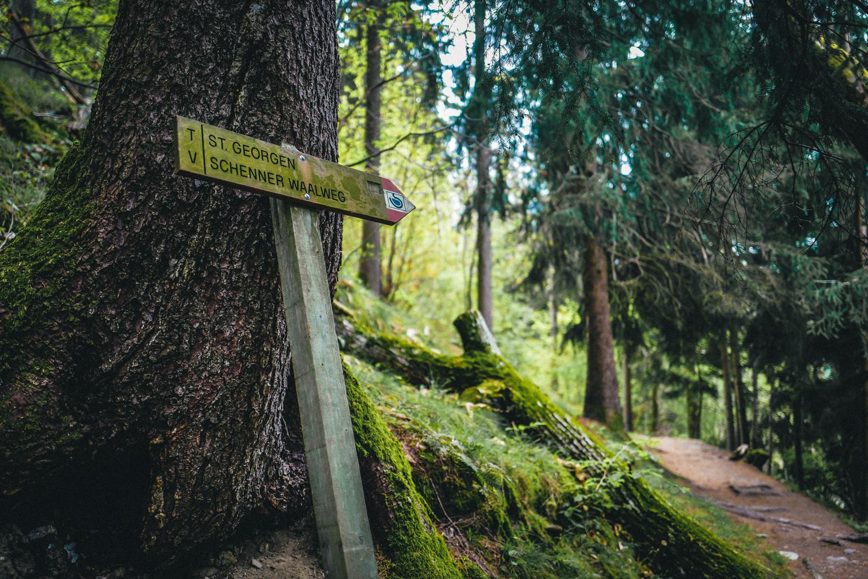 Waldbaden - Martin Kiem Südtirol
